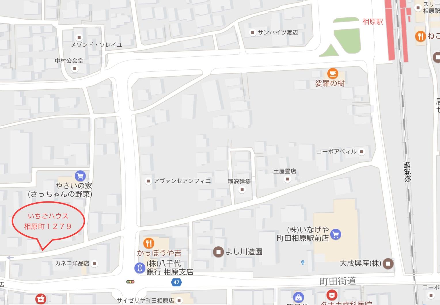 町田イチゴ狩り